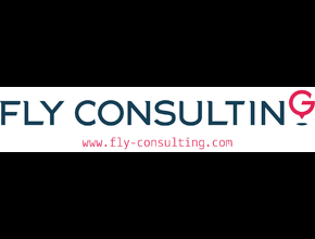 Fly-Consulting Robert Drohomirecki